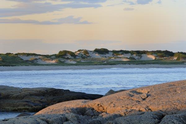 Horseneck Dunes