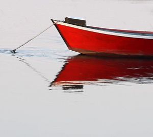Reflections of Red